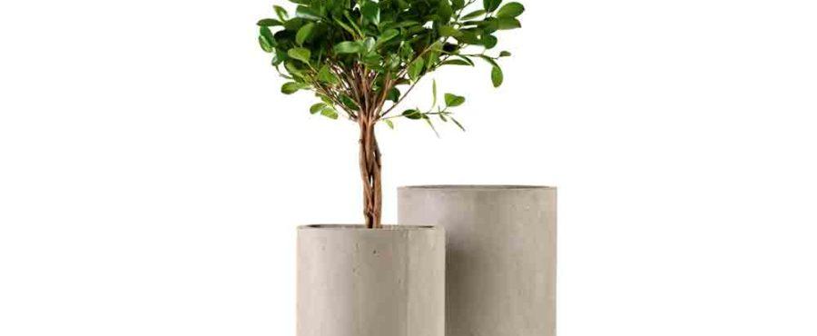 Cementkrukor från Claes Ohlson
