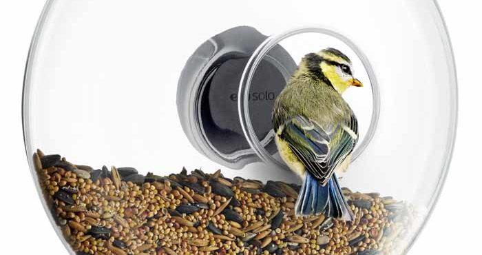 Eva Solos fågelmatare