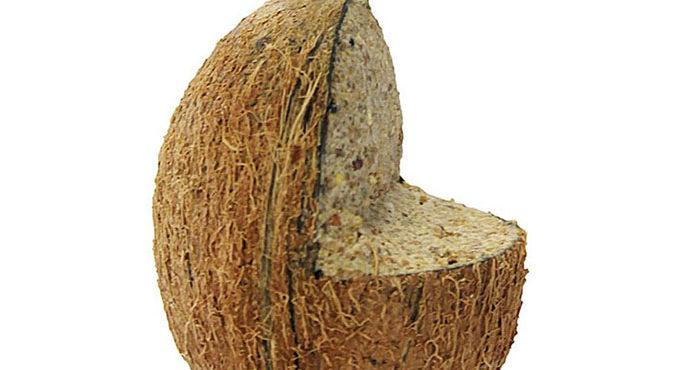 Kokosnöt med upphängning