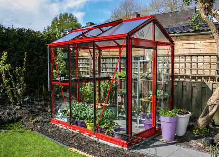 Växthuset piccolo
