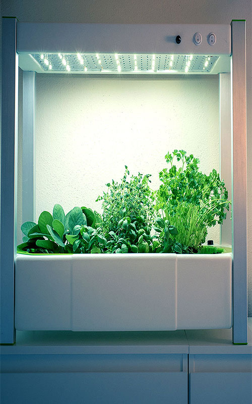 6-wexthuset-odlingsstation-greenunit