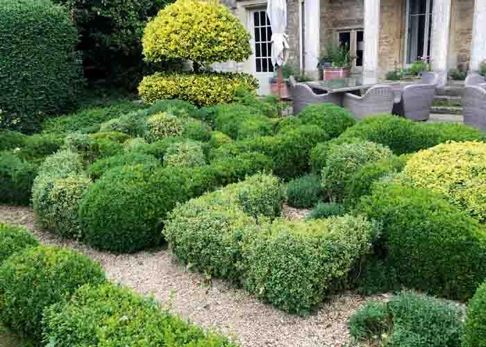 trädgårdsresor med hög kvalité