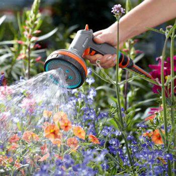 Gödsla och vattna under sommaren