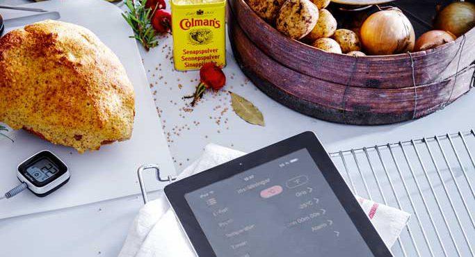 Gastromax köks- och grilltermometer