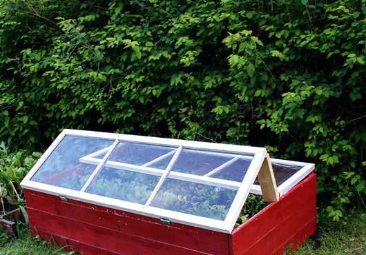 Placera drivbänken intill trädgårdslandet