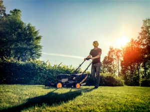 Fixa till din gräsmatta